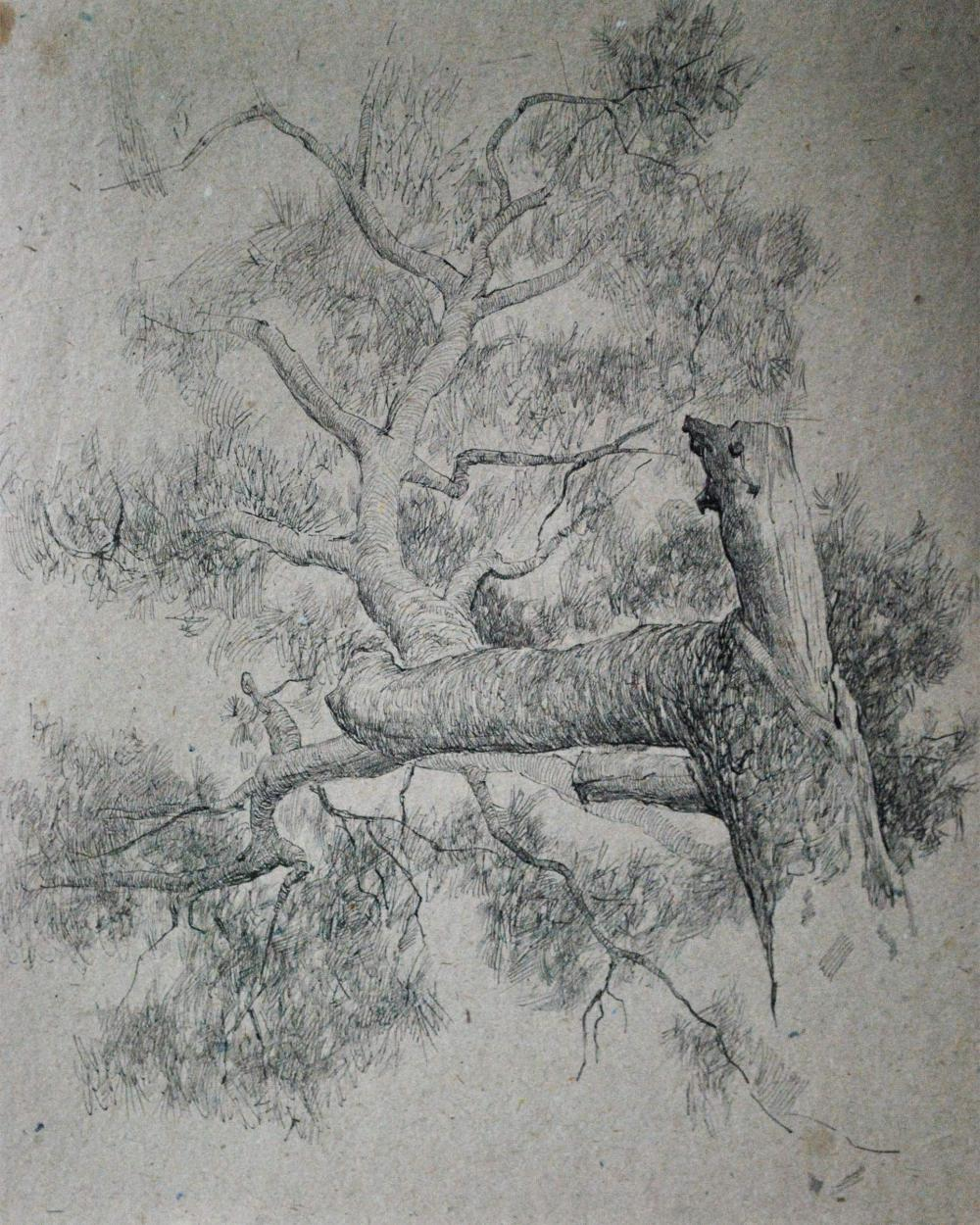 Sold Price Vitally Grigoryev Russian B 1957 1974 Old Tree Sketch Drawing December 6 0119 11 15 Am Est
