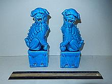 TURQUOISE PORCELAIN FOO DOGS IN GOOD CONDITION, 8 1/2