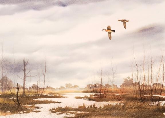 David Hagerbaumer  watercolor