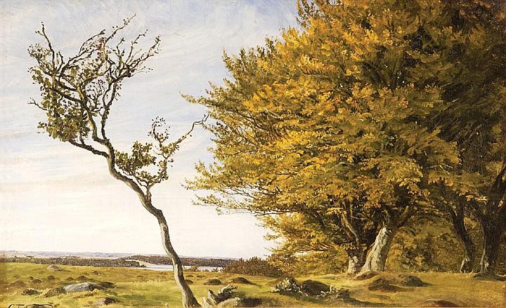 Carl Frederick Aagaard oil on canvas