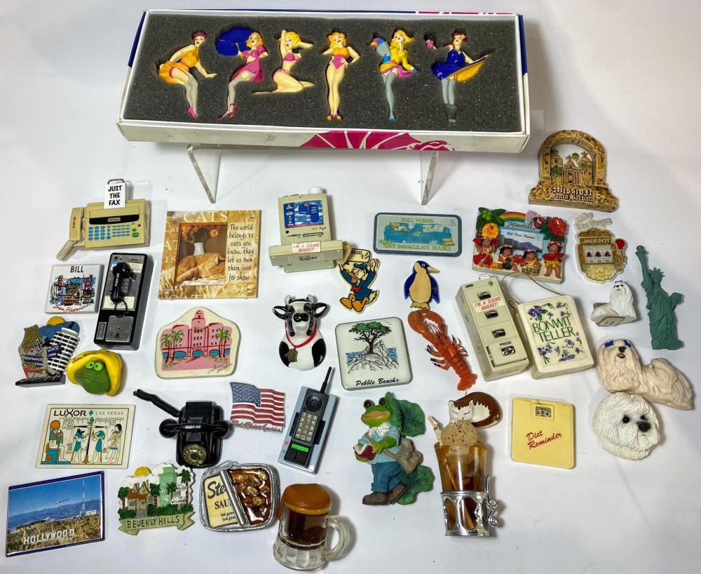 A Comprehensive Collection of Fridge Magnets Themes included are Cats Tourist Places No Smoking & Food