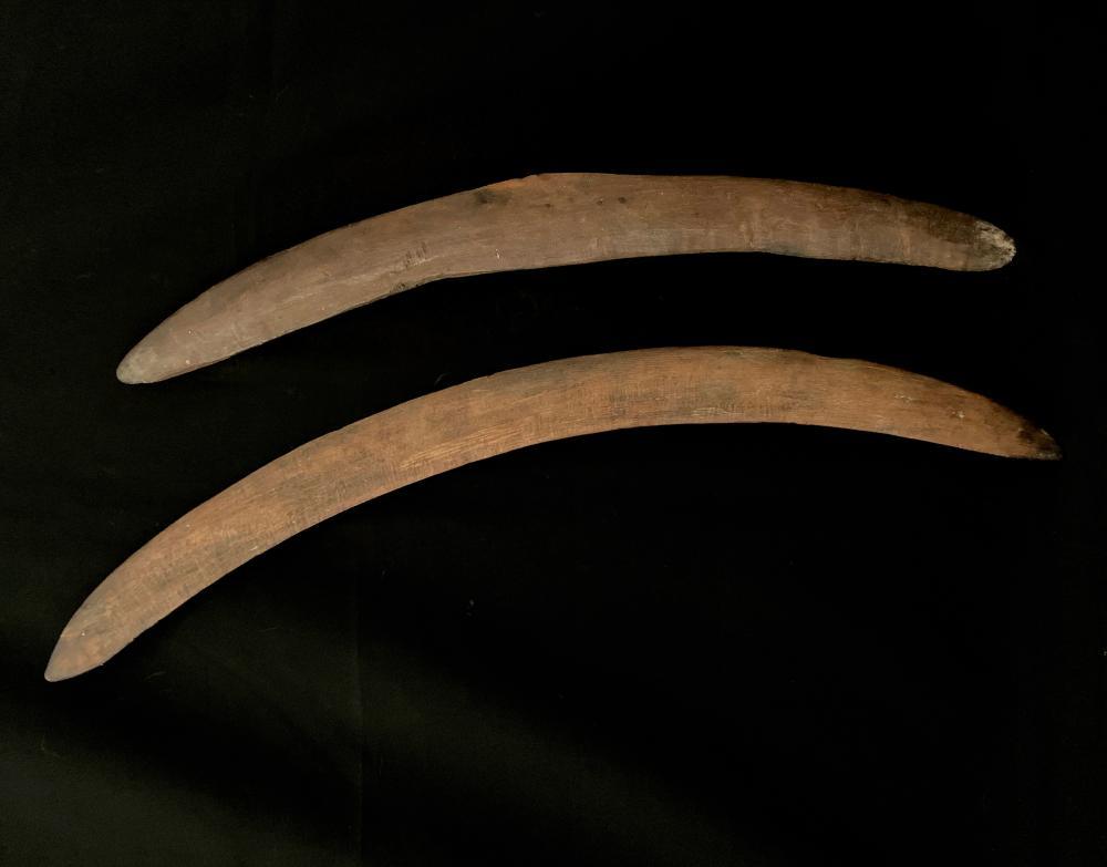 Two Early Boomerangs