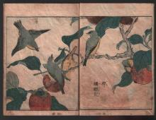 Original Japanese Woodblock printed book (ehon) by Shigemasa (3 Volumes)