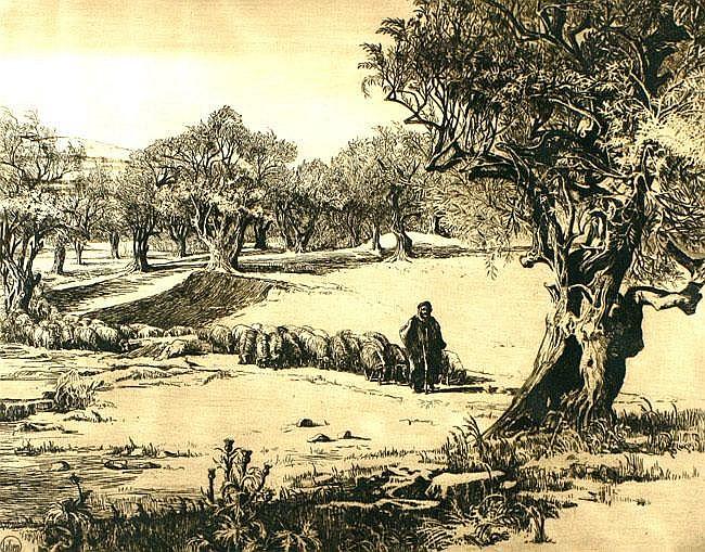 Ephraim Moshe Lilien 1874 - 1925 Syrian Shepherd,