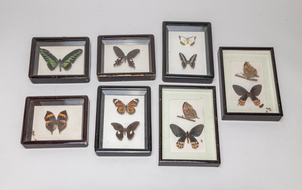 Group of Vintage Butterfly Wall Hangings