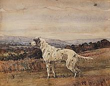 Geoffrey Sparrow - Study of a Setter in a