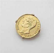 Broche en or jaune 18K (750/oo) agrémentée d une p