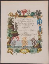 Knorr - Frontispiece with Coral