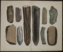 Seba - Fossils. 108
