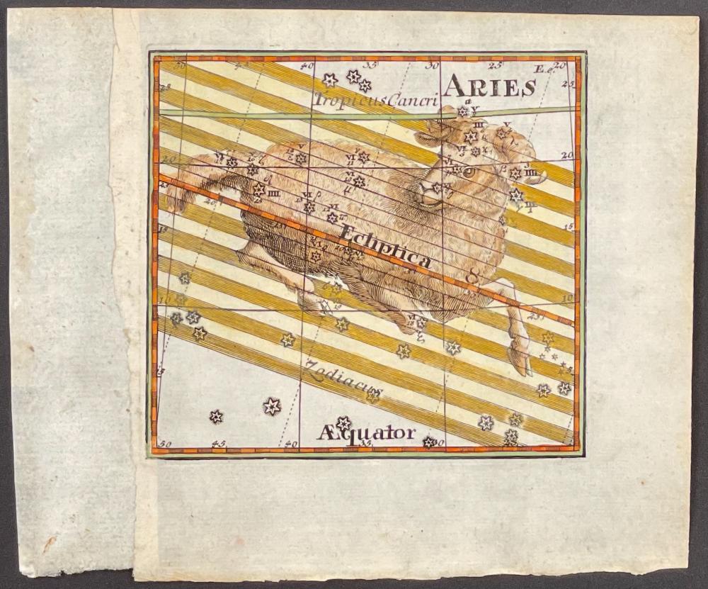 Thomas - Ram Constellation (Aries)