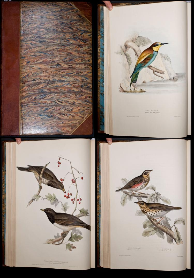 Gould - Volume 2 with 100 Folio Bird Lithographs