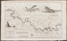 Salmon - Map of the River Gambia with Locust, Grasshopper, Insects