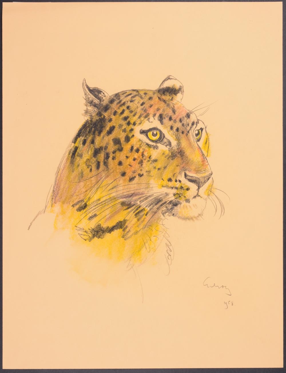 Lot 11017: Gilroy - Cheetah