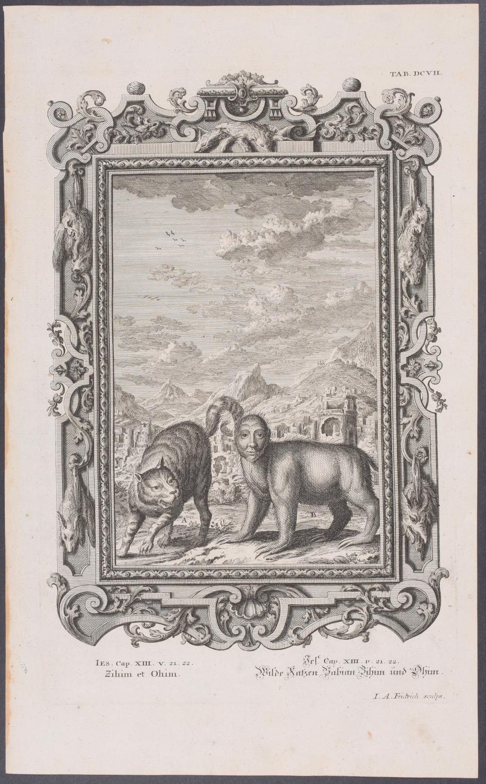 Lot 11032: Scheuchzer - 4 Quadruped Engravings