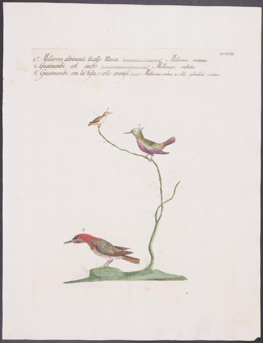 Lot 11095: Manetti - Hummingbirds. 402