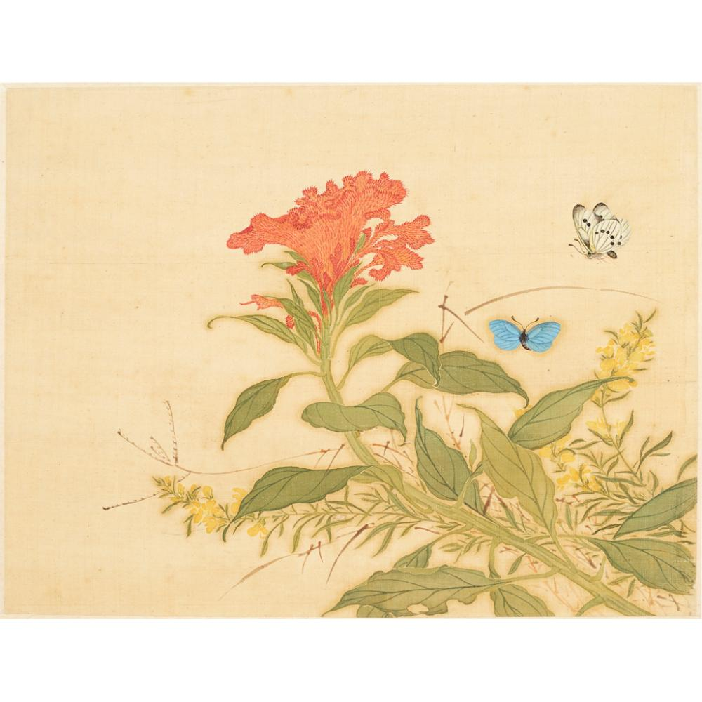 ALBUM OF TWELVE PAINTINGS OF INSECTS AND FLOWERS CHINESE SCHOOL (19TH CENTURY) each leaf 31.5cm x 26cm
