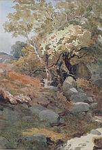 ALFRED WILLIAM PARSONS R.A. (BRITISH 1847-1920) THE MOUNTAIN PATH 25cm x 17cm (10in x 6.5in)