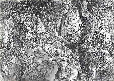 JOHN HUBBARD (B. 1931) FOREST 56cm x 78cm (22in x 30.5in)