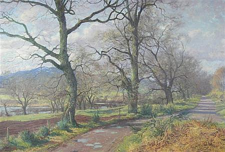 § DONALD M. SHEARER (SCOTTISH B. 1925) TREES NEAR CONTIN 52.5cm x 77.5cm (20.75in x 30.5in)