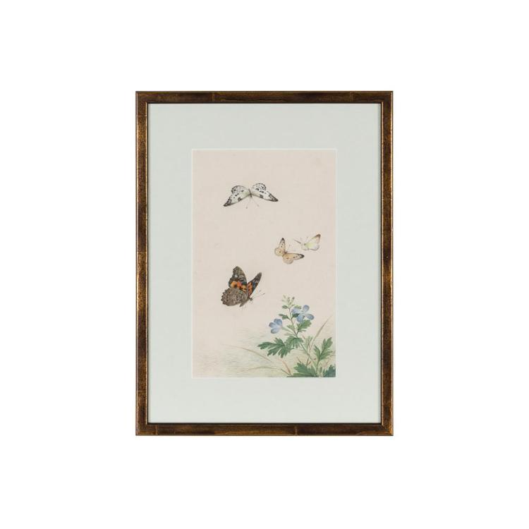 SET OF TEN CHINESE SCHOOL STUDIES OF BUTTERFLIES AND FLOWERS LATE QING DYNASTY, 19TH CENTURY 24cm high, 15cm wide