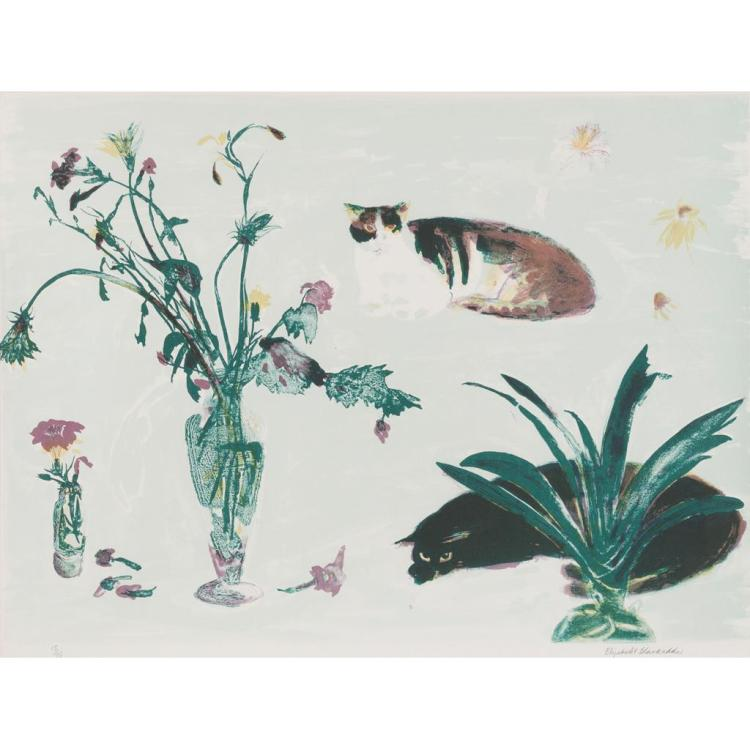 [§] § ELIZABETH BLACKADDER D.B.E., R.A., R.S.A., R.S.W., R.G.I. (SCOTTISH B.1931) CAT AND FLOWERS 60cm x 80cm (23.5in x 31.5in)