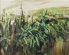§ PERPETUA POPE (SCOTTISH 1916-2013) DITCH WITH FERNS 61cm x 76cm (24in x 30in)