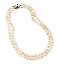 A double strand pearl necklace Length: 9cm (shortest strand)