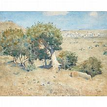 WILLIAM YORK MCGREGOR R.S.A., R.S.W. (SCOTTISH 1855-1923) A SUNLIT WOODED LANDSCAPE 38cm x 47.5cm (15in x 18.75in)