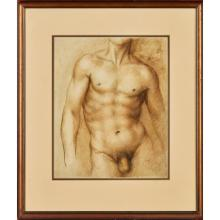BAZ PAIR OF MALE NUDE STUDIES 31.5cm x 25.5cm (12.25in x 10in) and a further drawing by C. Hermann Martini ''Study of a Naked Back'' (.