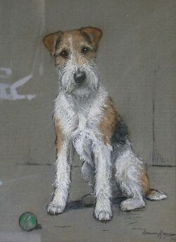 MARION HARVEY WIRE HAIRED TERRIER 34cm x 25cm