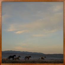 Nick Turner, Untitled (Five Horses at Sunrise), Wyoming