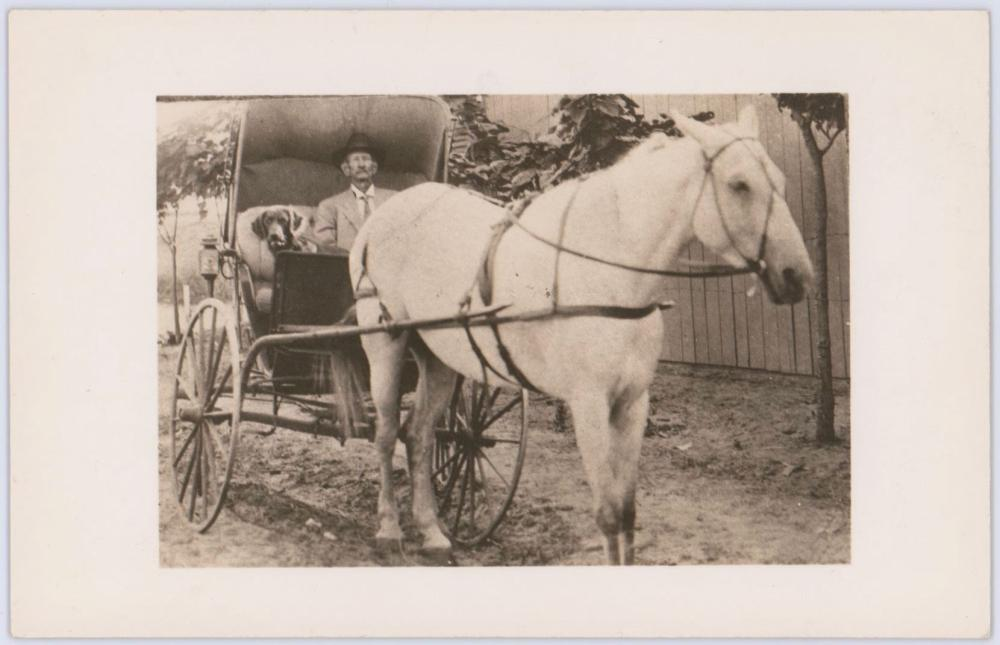 Vintage Real Photo Postcard of Frank James From the Archives of Old West Photographer John Tackett