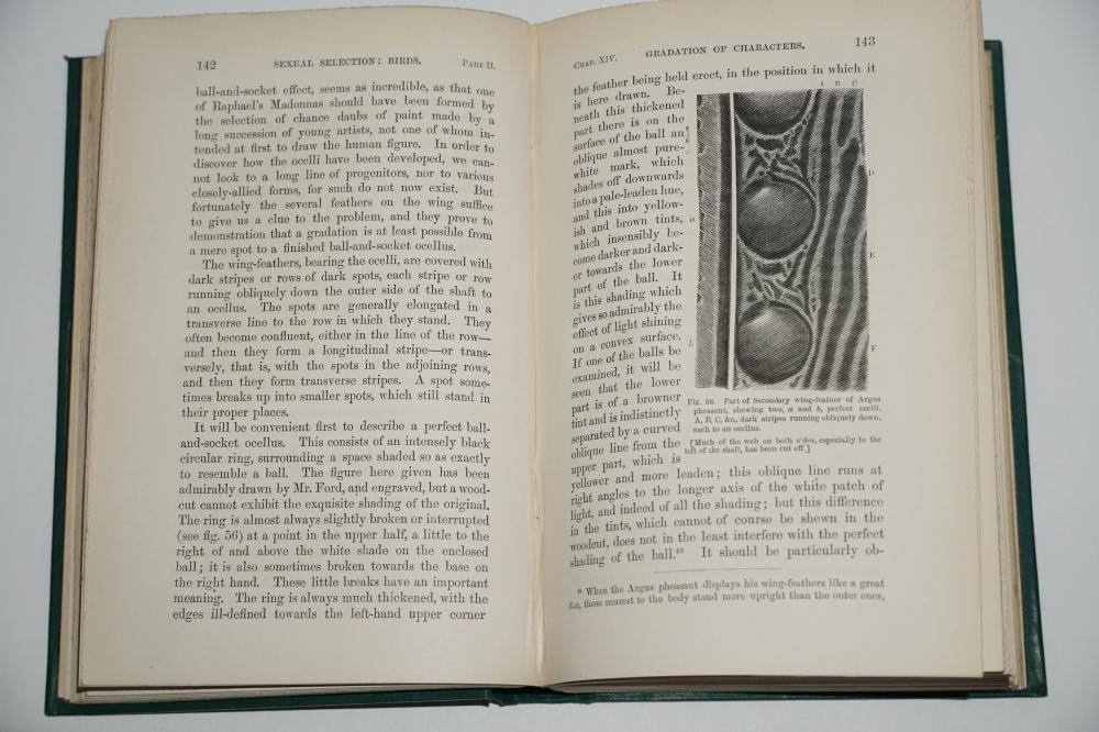 """Charles Darwin Signed """"The Descent of Man"""", First Issue Printings, Two Volumes with Gorgeous Signature Laid in."""