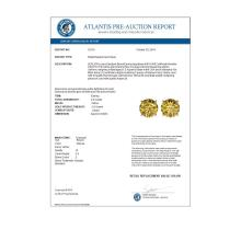 Lot 6446: 2.50 ctw Intense Yellow Diamond Stud Earrings 10K Yellow Gold - REF-427N5A - SKU:33110