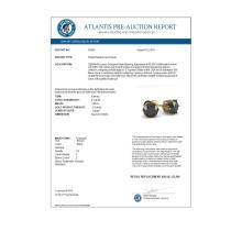 Lot 6597: 2.0 ctw Black Diamond Stud Earrings 18K Yellow Gold - REF-73K5W - SKU:35851