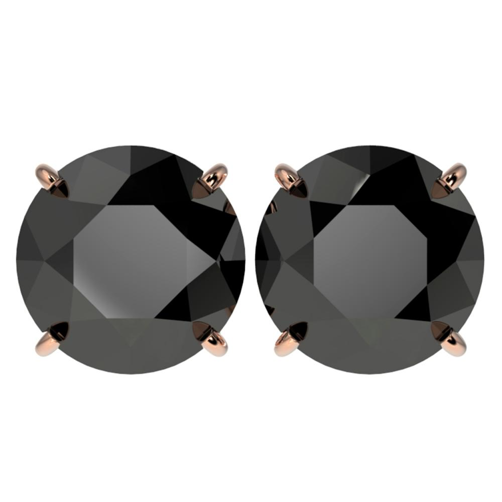 5 ctw Fancy Black Diamond Solitaire Stud Earrings 10K Rose Gold - REF-120N2A - SKU:33146
