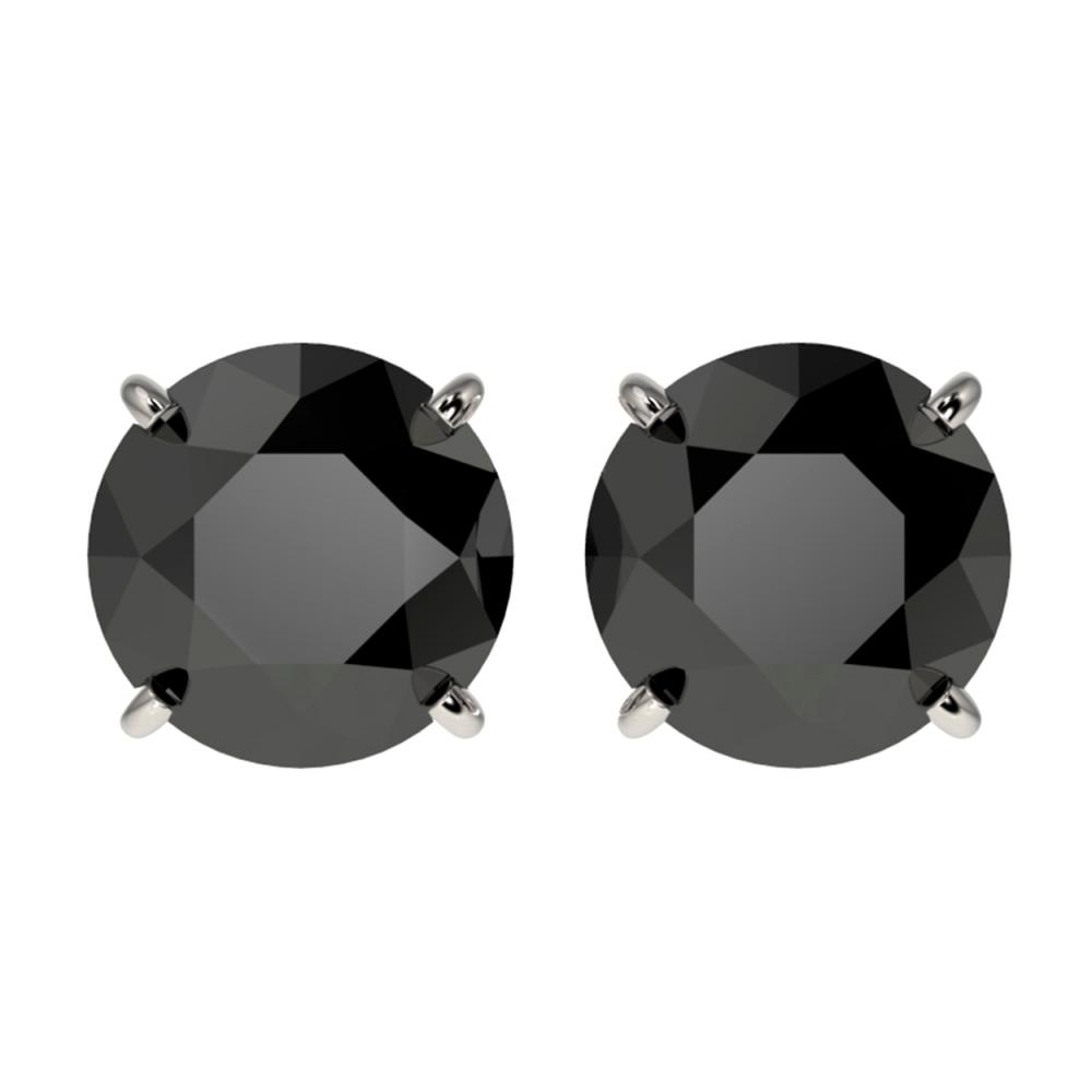 3.70 ctw Fancy Black Diamond Solitaire Stud Earrings 10K White Gold - REF-73K5W - SKU:36703