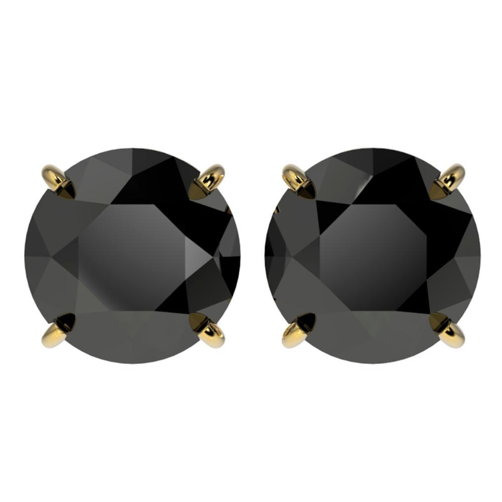 4.19 ctw Fancy Black Diamond Solitaire Stud Earrings 10K Yellow Gold - REF-84N2A - SKU:36713