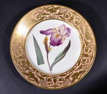 Derby Porcelain Salmon Ground Plate, An Elder Scented Iris, by John Brewer