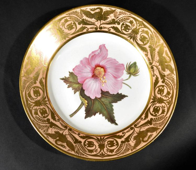 Antique Derby Porcelain Salmon Ground Plate, A Marsh Hibiscus, by John Brewer