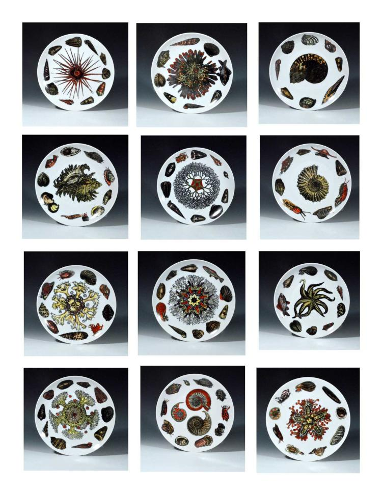 Piero Fornasetti Conchiglie Pattern Porcelain Complete Set of Twelve Plates, Decorated With Sea Anemones, Urchins & Shells