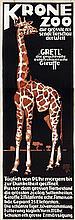"""Poster by Siegmund von Suchodolski - Krone Zoo """"Gretl""""die prachtvolle Ostafrikanische Giraffe"""