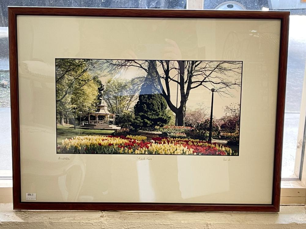 Bowral leadlight panel from Merrigang St Bowral along with a Bowral Tulip Time photo, panel approx 34cm x 81cm (2)