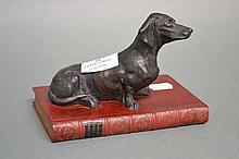Dachshund mounted on a burgundy coloured book,