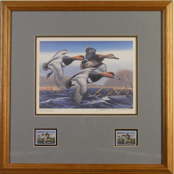 1988 Federal Duck Stamp Print & 2 stamps