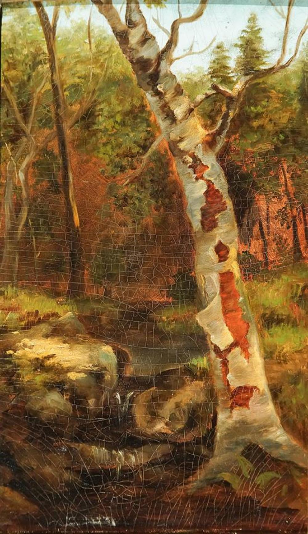 John William Casilear (American 1811-1893), North Conway Birch, Oil on Board, 18-1/2 x 12-1/2 inches