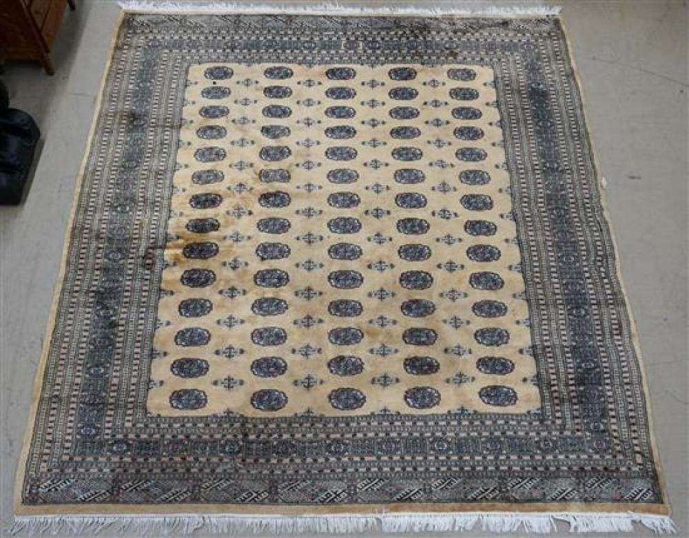 Pakistan Bokhara Rug, 10 ft 3 in x 8 ft 5 in