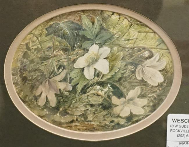 English 19th Century School, Nature Study, Watercolor on Paper, Signed with Monogram under mat, Frame: 11 x 12-1/2 in