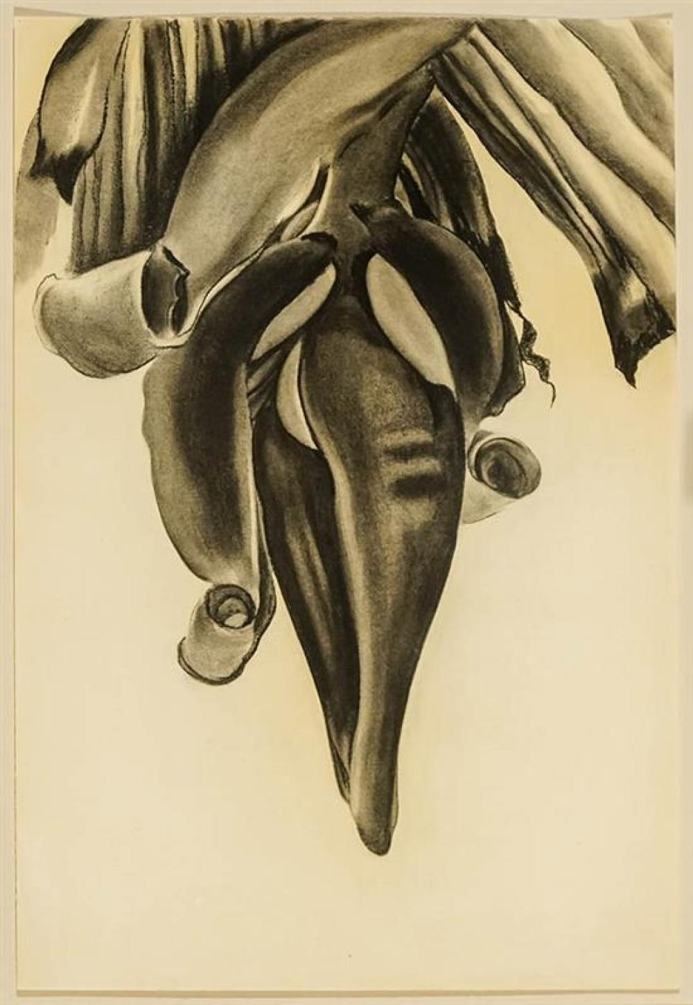 Georgia O'Keeffe (American 1887-1986), Untitled (Banana Flower) (Buhler Lynes 834), Framed Charcoal on Paper, 21-3/4 x 14-3/4 inches
