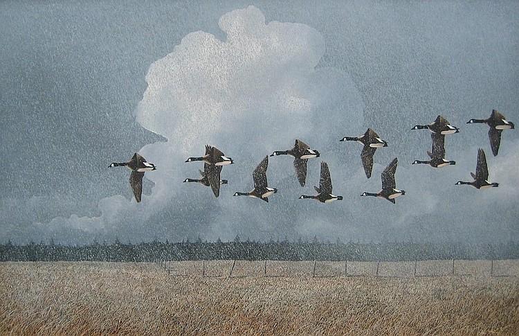 Kenneth Kirkby Birds in Flight